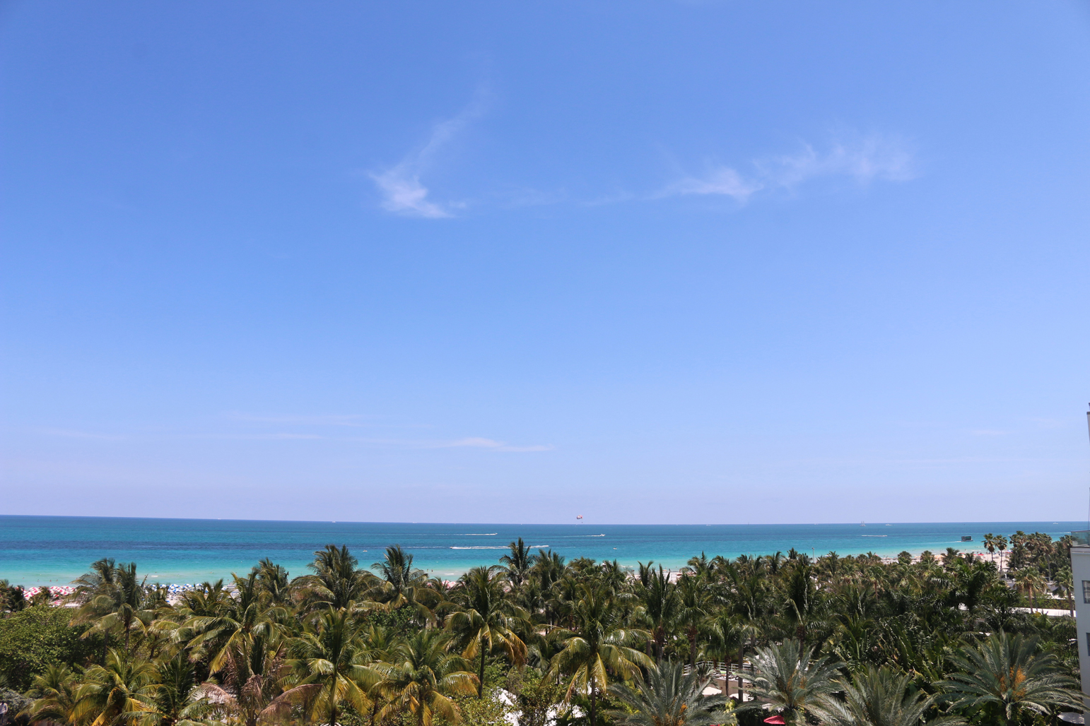 miami staycation top hotels