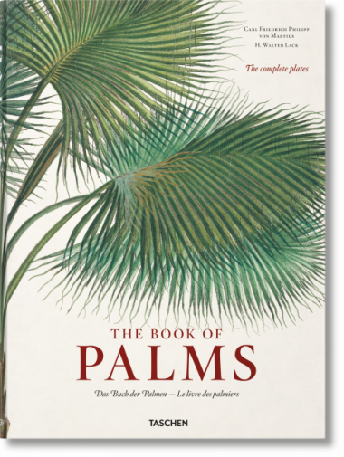 Palms - Top Coffee Table Books