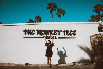The Monkey Tree Hotel Palm Springs
