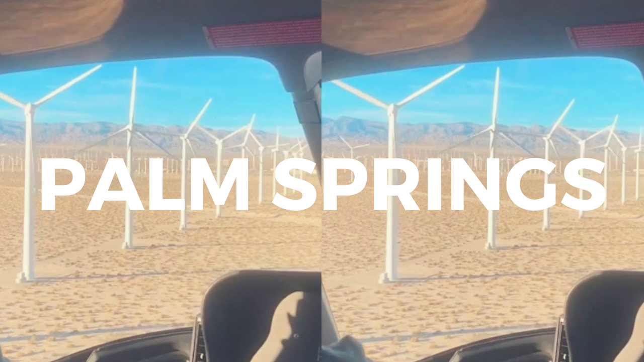 why we're obsessed with palm springs