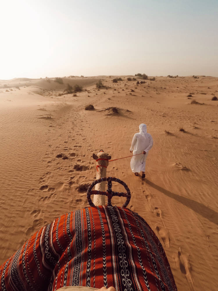 I Found The Most Ethical, Luxurious & Best Desert Safari in Dubai