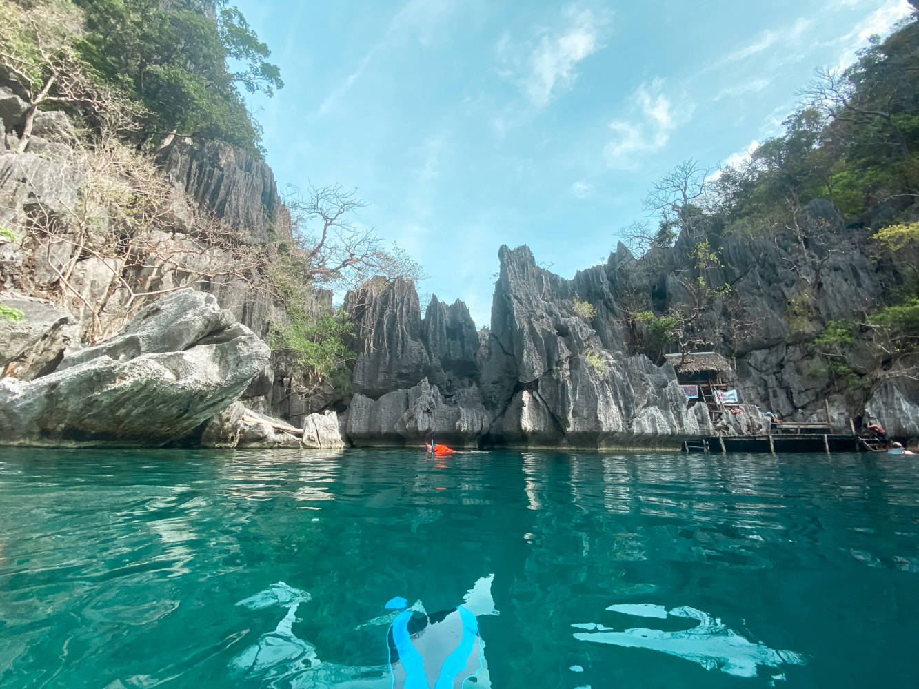 Barracuda Lake Coron, Philippines #barracudalake #coron #palawan