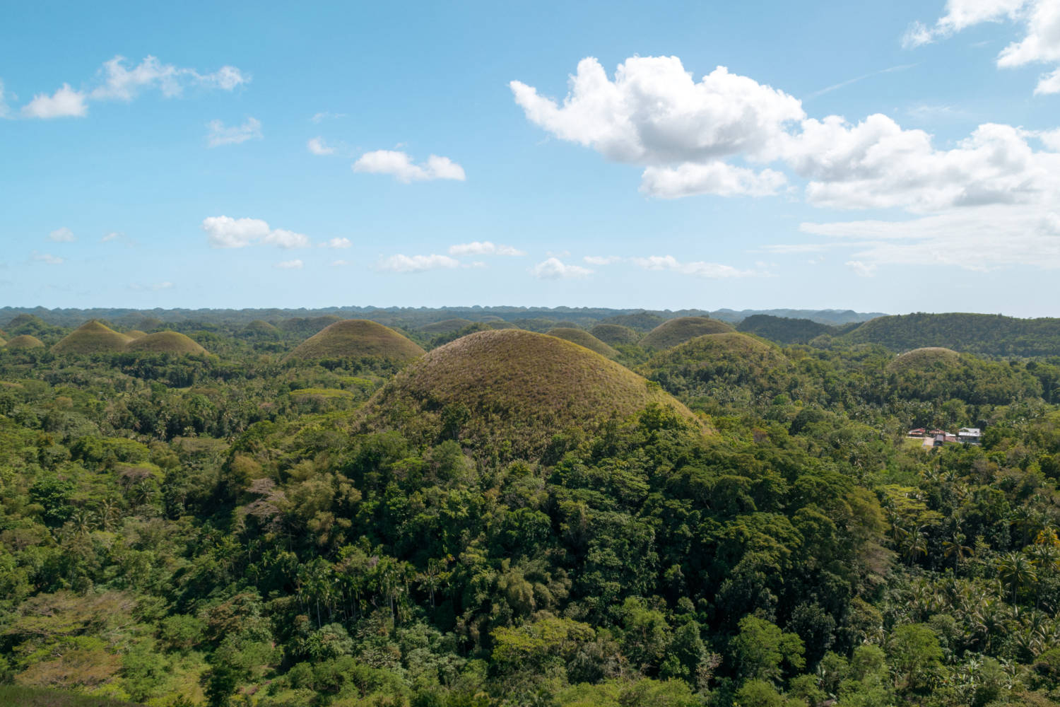 How To See All Of Bohol Philippines In A Day #bohol #tarsier #chocolatehills
