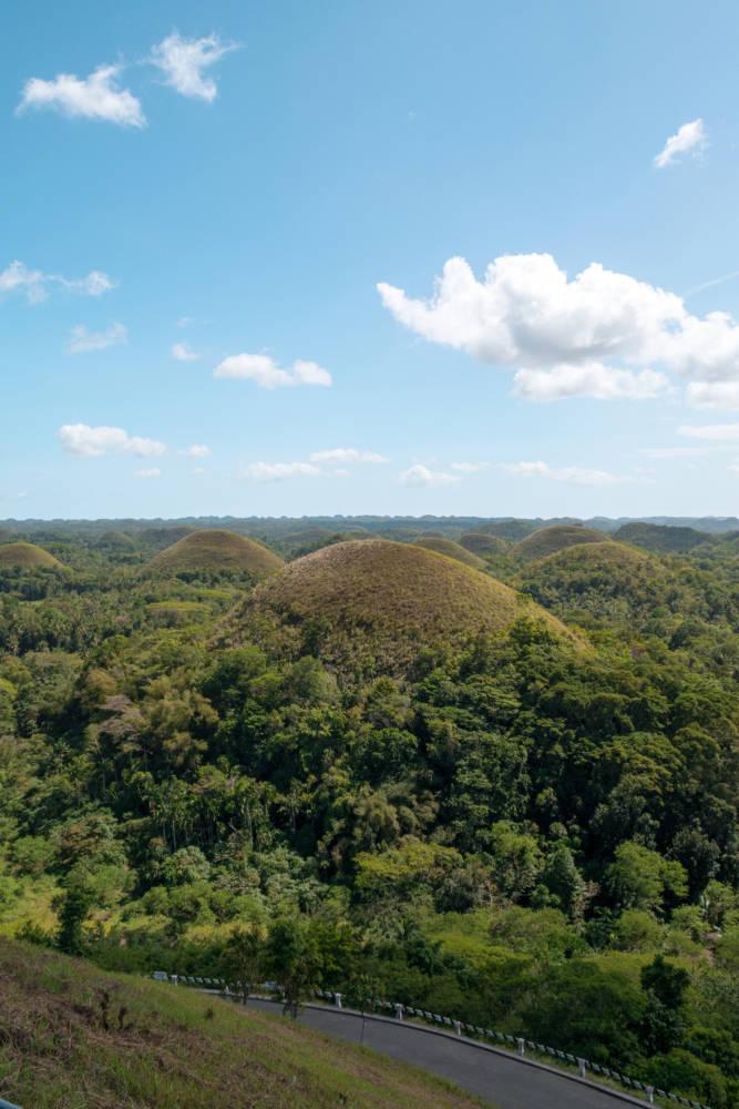 Chocolate Hills Bohol #bohol #tarsier #chocolatehills