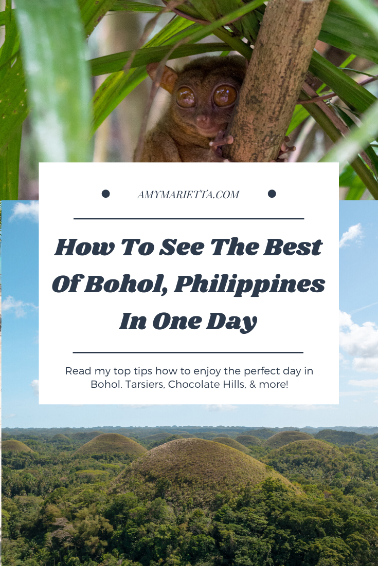 How To See The Best Of Bohol Philippines In One Day #bohol #tarsier #philippines