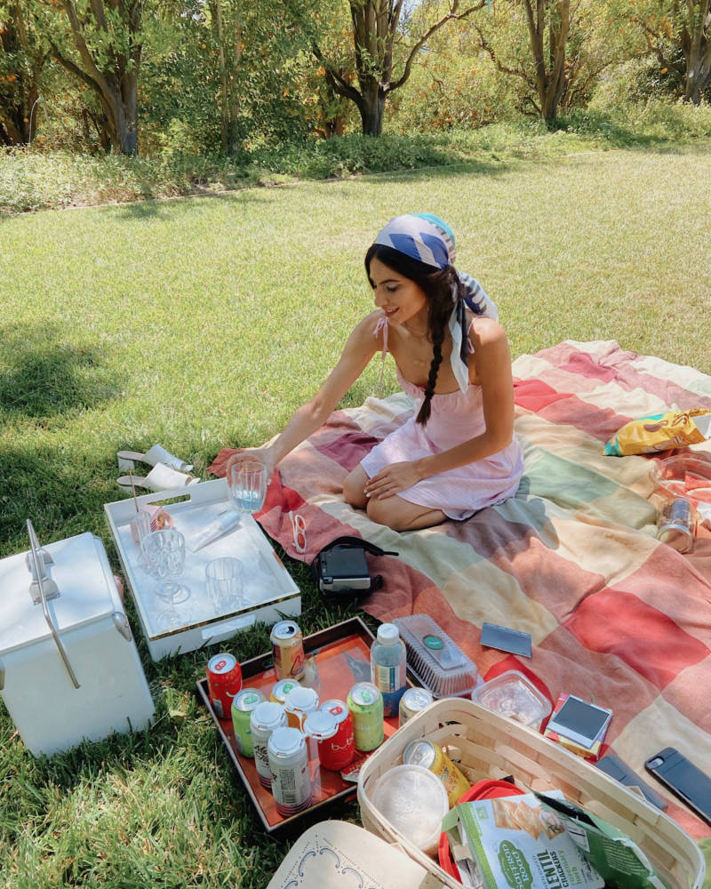 Aesthetic Picnic Essentials - Amy Marietta
