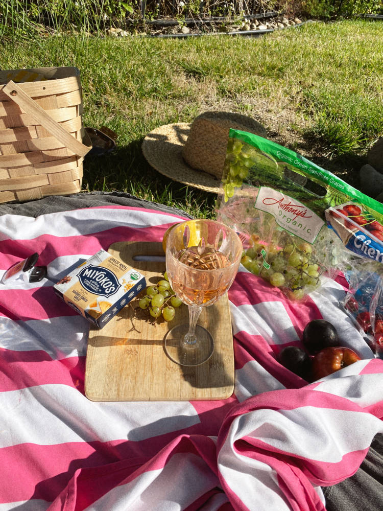 How To Have An Aesthetic Picnic - Picnic Essentials